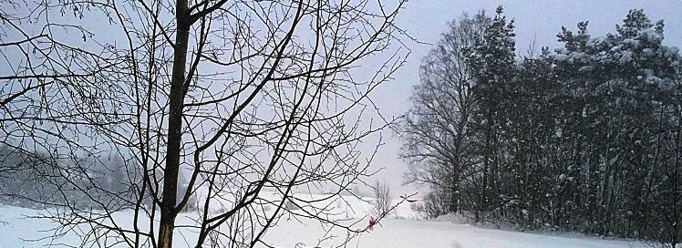 Геодезические работы, Топографическая съемка, Контрольно-исполнительная съемка, Топоплан, Геодезист, Услуги геодезиста